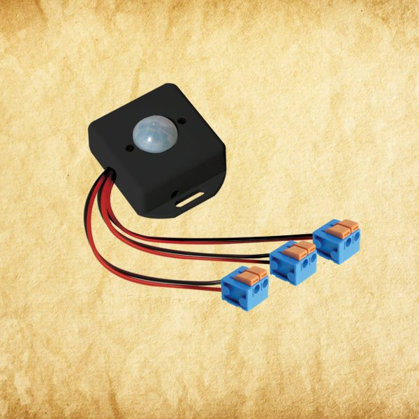 iScare Switcher - PIR Sensor 12v