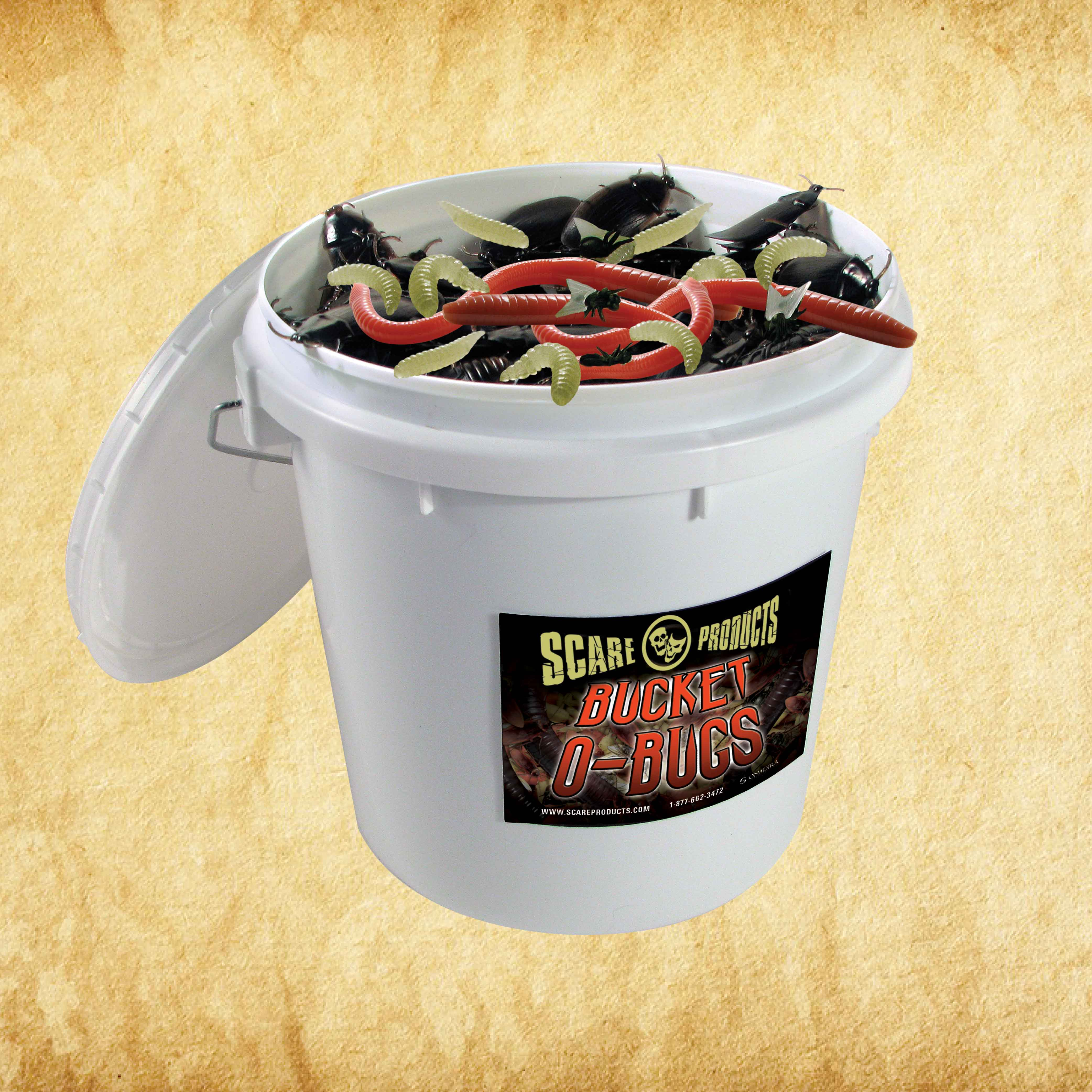 Insect Mixed Bucket (144 Roaches, 100 Worms, 480 Maggots, 288 Spiders)