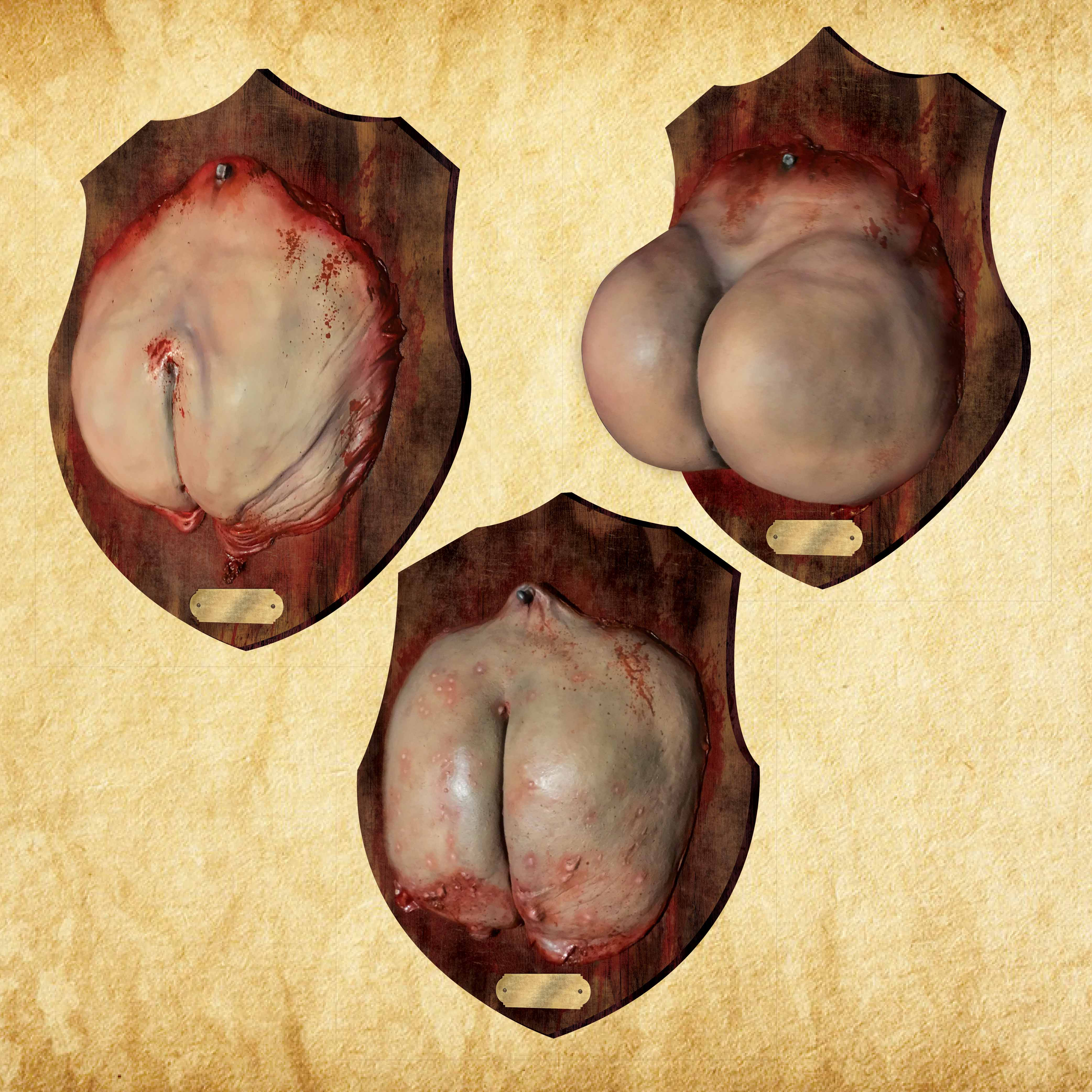 Butt Plaques - Set of 3